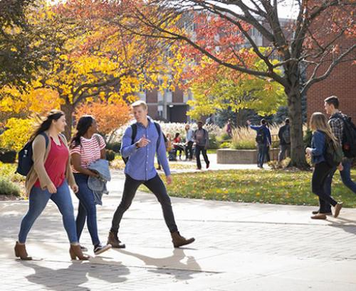 College students back to campus
